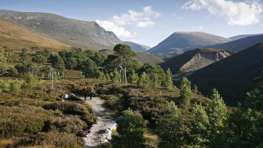 cairngorms_national_park_the_highlands_-_paul-tomkins_visitscotland
